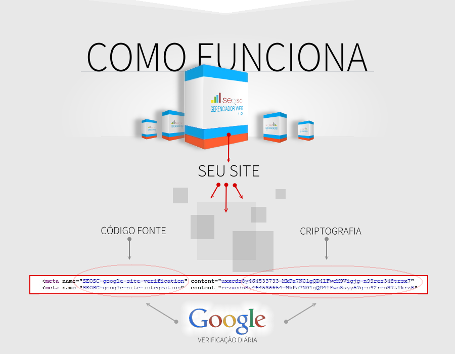 SEO-SC-SEO-SANTA-CATARINA-SC-Software WEB 1.0